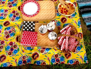 Picnic Birthday